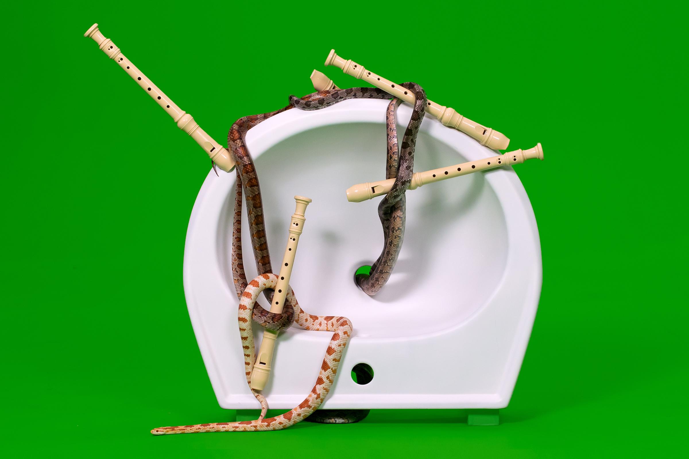 Пауль Барш и Тильман Хорниг. Sanitary Ceramics. Керамические раковины, смешанная техника. 2016 – наст. время. © Пауль Бар