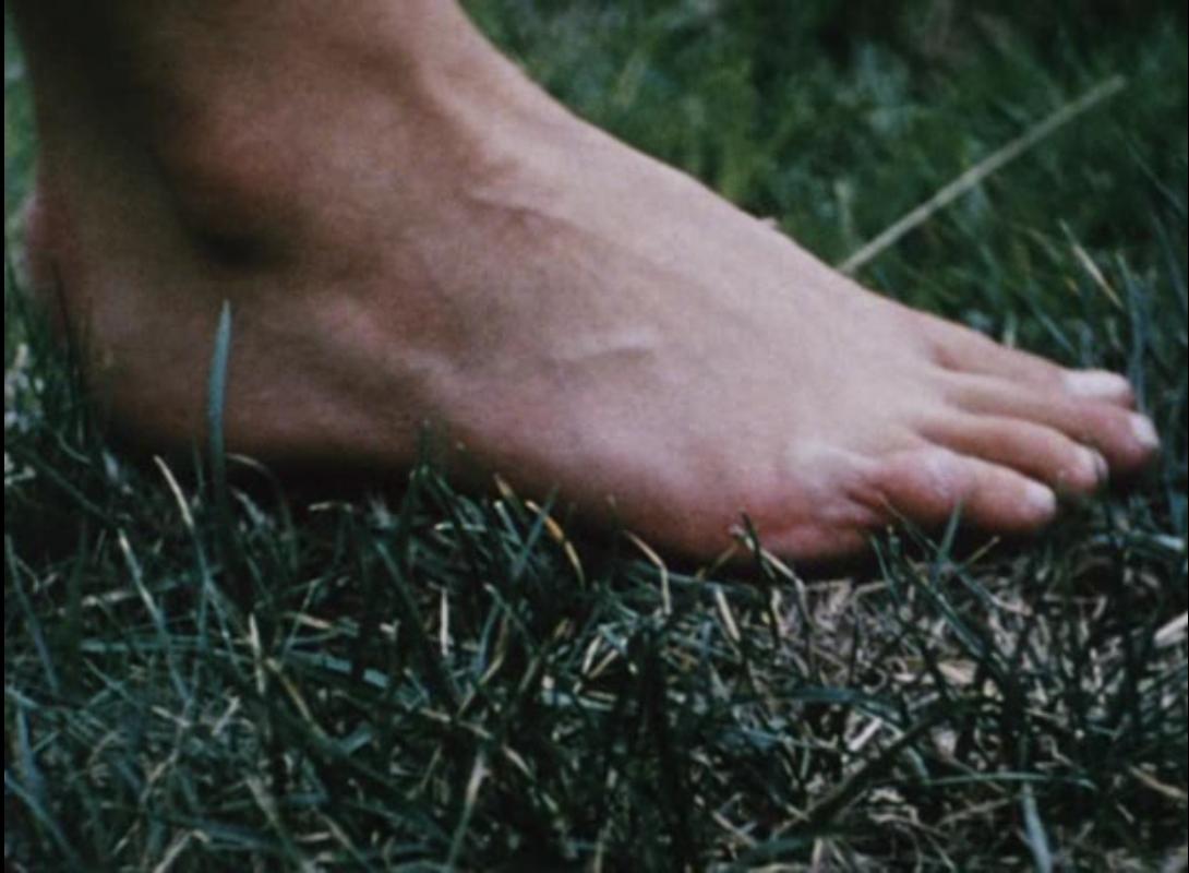 Кадр из фильма <i>Walden</i>. Йонас Мекас. 1969
